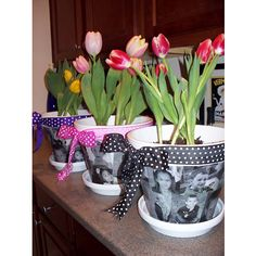 Photo Flower Pot Idea