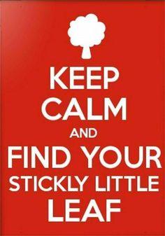 Sticky Leaf #GI #GR @SylvainReynard @GIFansFilipino