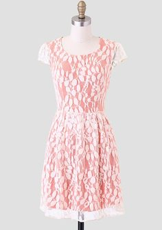 Holiday In Florence Lace Contrast Dress