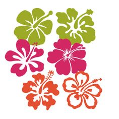 free download of hibiscus dingbats from dafont.com hibiscus stencil, stuff, hibiscus printable