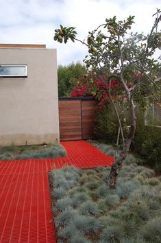 colorful walkway with great landscaping #yard #backyard #garden #walkway #sidewalk
