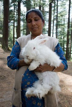 This woman just hangs out in a park and lets you pet her giant rabbit! BEST PARK
