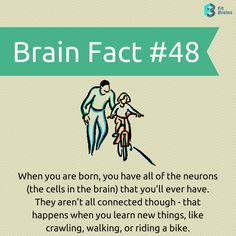#Fact of the Day  #health #brain