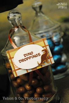 Food ideas for dinosaur party! (Dino droppings, bones, cryolophosaurus cakesters, etc.)