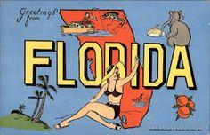 vintage postcard from florida