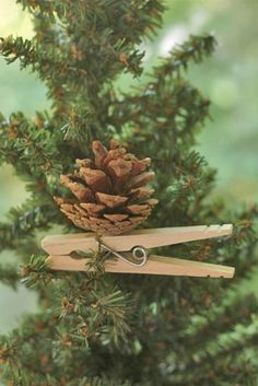 Pine cone Clothespin Ornament DIY.  Use paint-dipped pine cones for more variety!
