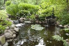 I love ponds integrated with a nice garden. Love the barrel, too.