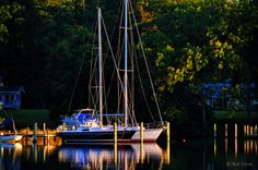 Up the Creek <> Sailboats docked on Carter's Creek in Lancaster, Virginia.