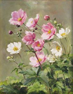 Artiste: Anne Cotterill Espace: Anne Cotterill Flower Greetings Cards and Prints sur Facebook.