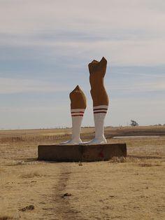 Got socks? Amarillo, TX