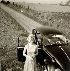 Black Beetle on the road