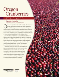 Oregon cranberries at a glance by Oregon State University, Department of Horticulture and Extension Service