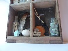 Natural History Collection Rustic Home Decor by NyeDesigns on Etsy, $135.00