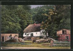 Güdenhagen Kreis Köslin  Bauernhof