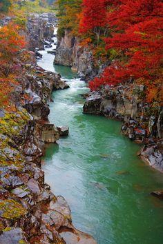 Autumn Gorge, Genbikei, Japan  photo via tarz