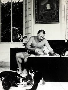 Ernest Hemingway, #LiteraryCat