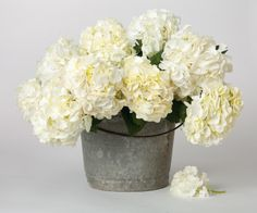 White hydrangeas in galvanized buckets from Bachman's.