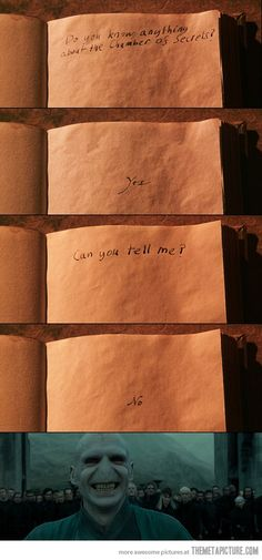 Voldemort is so mean!