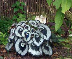 Urban Gardening : Escargot begonia