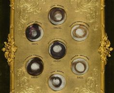 Mary Shelley's memorial album with locks of her friends hair