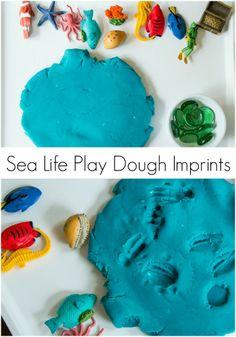 Sea Life Play Dough Imprints & Sensory Play Blog Hop | Plain Vanilla Mom
