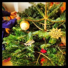 Toddling around the Christmas Tree from Culture Baby christma activ, christma tree, christmas trees