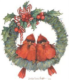 Fluffy red birds