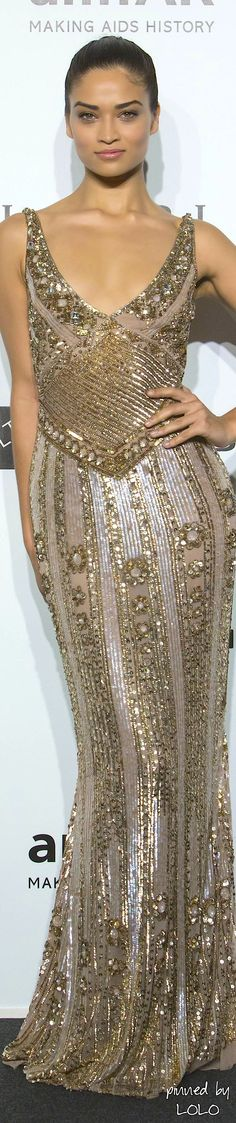 Glamour gown..Shanina Shaik