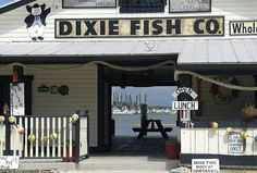 Miami here we come on pinterest 55 pins for Dixie fish company