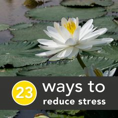 23 Scientifically-Backed Ways to Reduce Stress Right Now