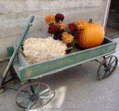So cute...  I'd love to dig out my old wagon if it's still around!