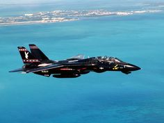 F14 Tomcat BlackBunny