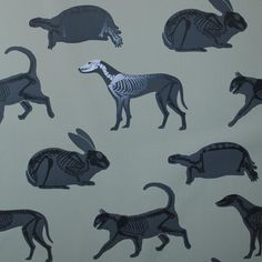 Some of the coolest wallpaper. The animal skeletons are either glow-in-the-dark, or painted shiny on matte. I believe I've seen this in Urban Outfitters.