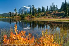 Cascade Mountains in Oregon in October....beautiful!!!