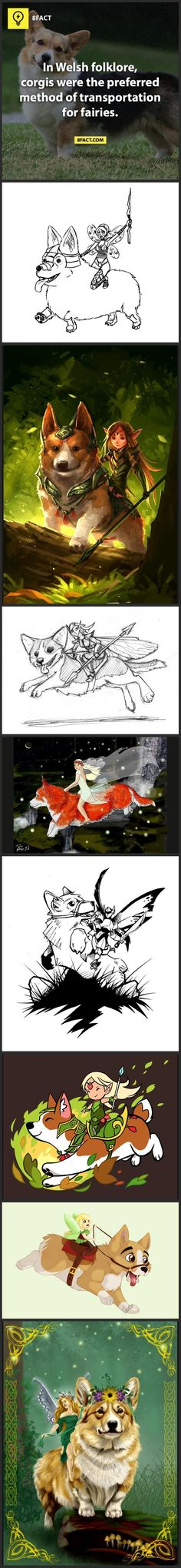 Love this! My Zoe has a very prominent fairy saddle, for a red. They're usually darker and more visible in a sable.