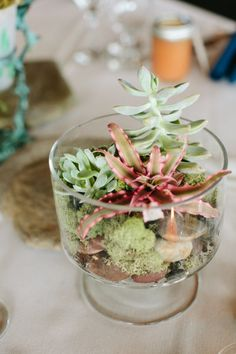 Hurricanes filled with moss and rocks. Photography by torywilliams.com Event Coordination by limedropevents.com Floral Design by thetopiaryflorist.com  Read more - http://www.stylemepretty.com/2013/06/10/canandaigua-lake-new-york-wedding-from-tory-williams-photography/