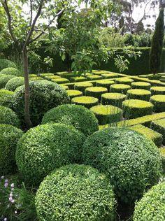 hedg, bangay garden, circl, formal gardens, topiari