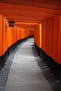 Thousand torii to a Shinto shrine in kyoto Japan |