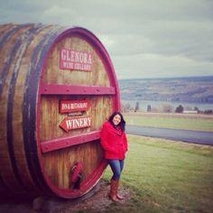 Glenora Vineyards