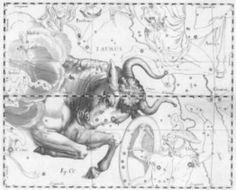 tattoo patterns of zodiac signs