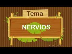 Remedio casero natural para los nervios