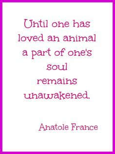 Unconditional love.  Very True, we have had Horses and Labradors, and they were all like one of the family! |