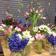 Daffodils, tulips, hyacinths, anemones, winter hazel.