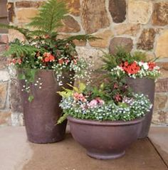 Fine Gardening: Tips for container gardening