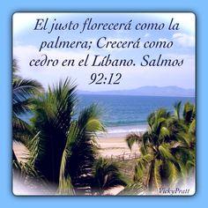 Salmo 92:12