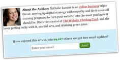 How To Add An Opt-in Box At The Bottom of Your Blog Posts