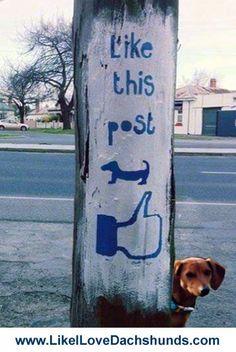 'like' this post!