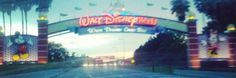 Renting a Car at Walt Disney World? Florida Driving Tips.