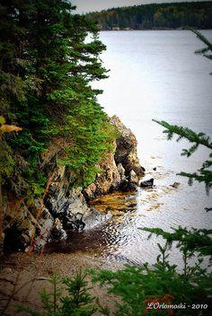 Maine coast at Owl's Head