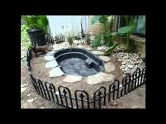 Backyard pond on pinterest small ponds garden ponds and for Koi pond builders cape town